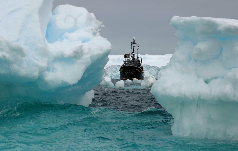 Антарктическа експедиция на Sea Shepherd