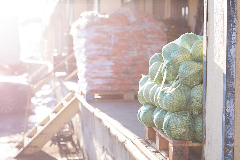 Пресни зеленчуци на зеленчуковата борса в София