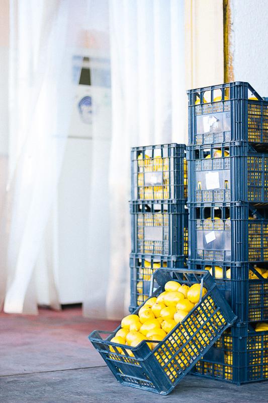 veggie-market-sofia-7